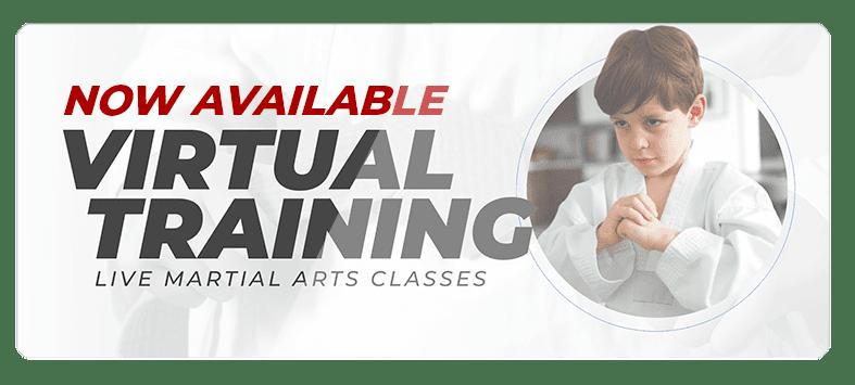 VIRTUALPOPUPSPARK.1.1, West Louisiana Jujutsu Training Academy Leesville
